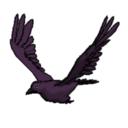 Raven_2
